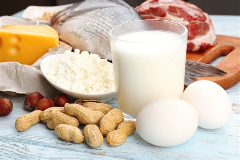 5 protein foods top 5 protein rich food to build muscles fitness also to
