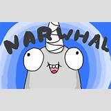 Narwhals Cartoon | 854 x 512 png 125kB