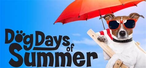 dogs days are celebrate the days of summer with pet friendly event