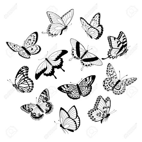 flying butterfly tattoo designs to draw butterfly butterfly flying butterfly