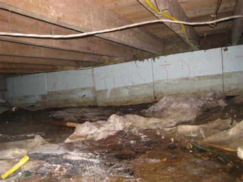 crawl space warning signs in ontario mold condensation