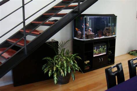 acuarios en casa la ubicacion acuario en casa mascotas taringa