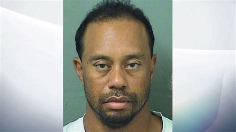 Palm County Sheriff Arrest Records Tiger Woods Arrested In Florida On Dui Charge Golf News
