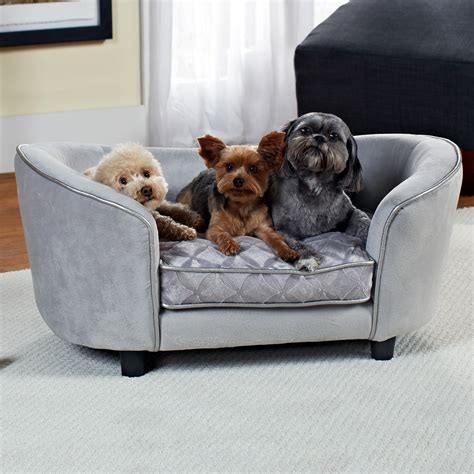 enchanted home pet quicksilver sofa dog bed  gray petco