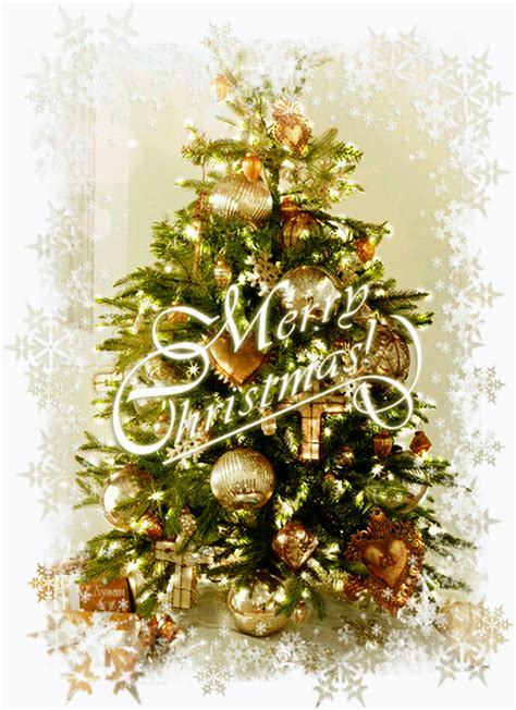merry christmas gif quote   christmas tree pictures   images  facebook