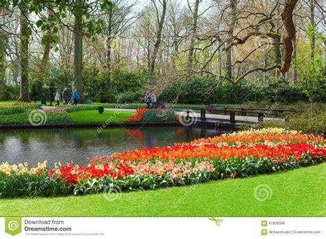 keukenhof flower garden netherlands editorial photo image