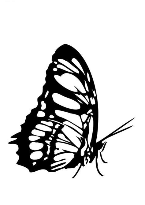 imagenes de mariposas monarcas para colorear dibujos para colorear hermosa mariposa monarca es
