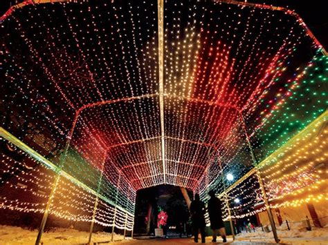 lights at the zoo chicago on this day in chicago history lincoln park zoo premieres