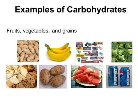 carbohydrates a a unit on biomolecules carbohydrates proteins lipids