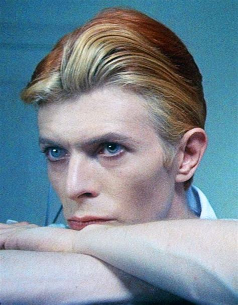 david bowie the who fell to earth multilingual edition books david bowie as jerome newton quot the who fell to
