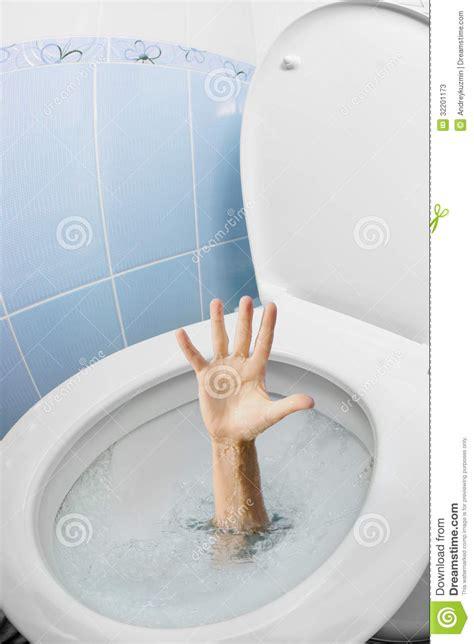 toilette pide mano humana en la taza inodoro o el wc que limpia con