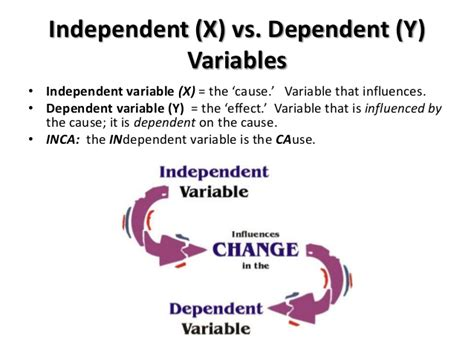exle of dependent variable lecture 3 concepts