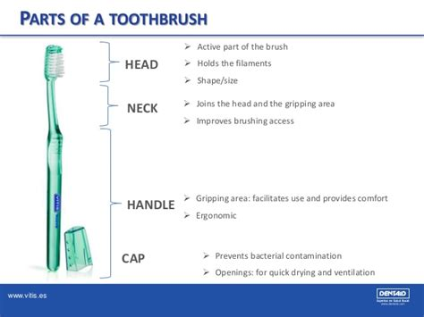 which is right for me which toothbrush is best for me