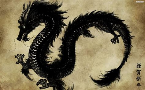 black and white dragon wallpaper black dragon wallpapers wallpaper cave