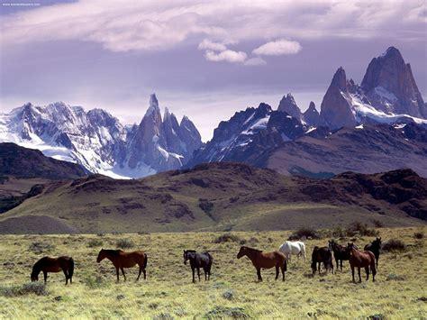 Patsa agencia de turismo tucum 225 n argentina