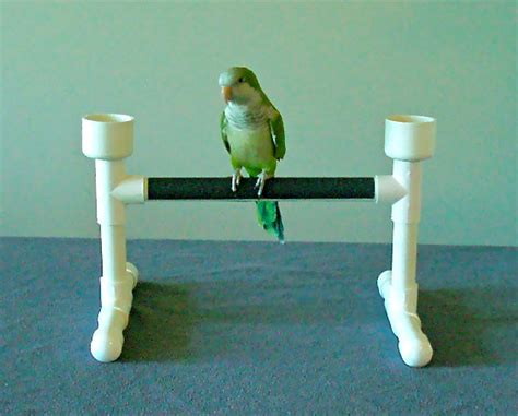 items similar to tabletop parrot bird perch stand play gym