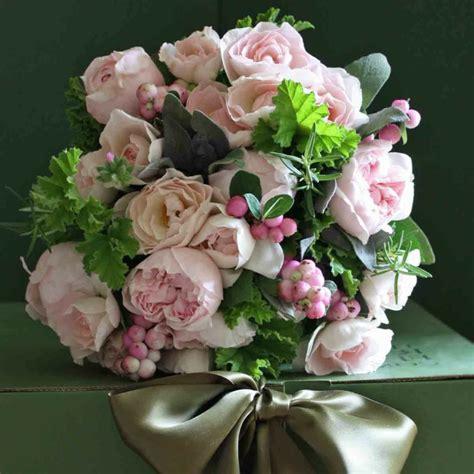 mazzi di fiori turbo mazzi di fiori particolari dp32 pineglen