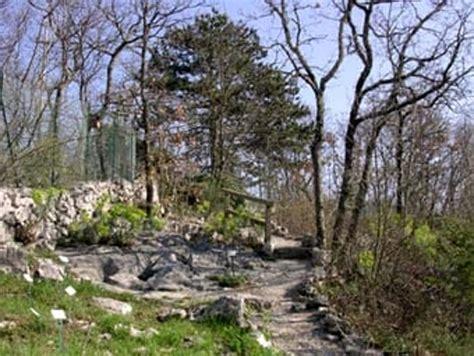 giardino botanico carsiana riapre l orto botanico carsiana con tanti eventi per