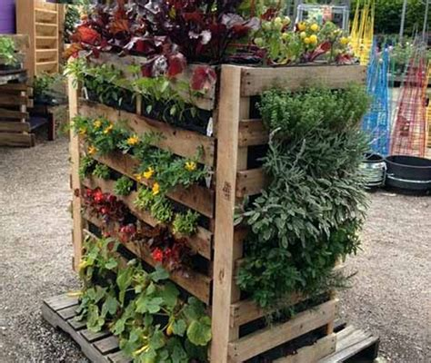 Recycled Vertical Garden Wooden Pallet Vertical Garden Ideas Recycled Things