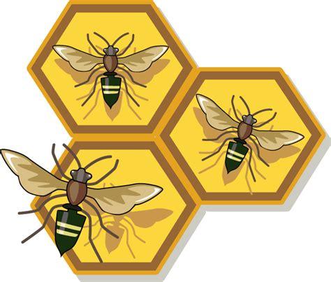 Free Honey Bee Clip by Bee Clip Free Clipart Of Honey Honeycomb