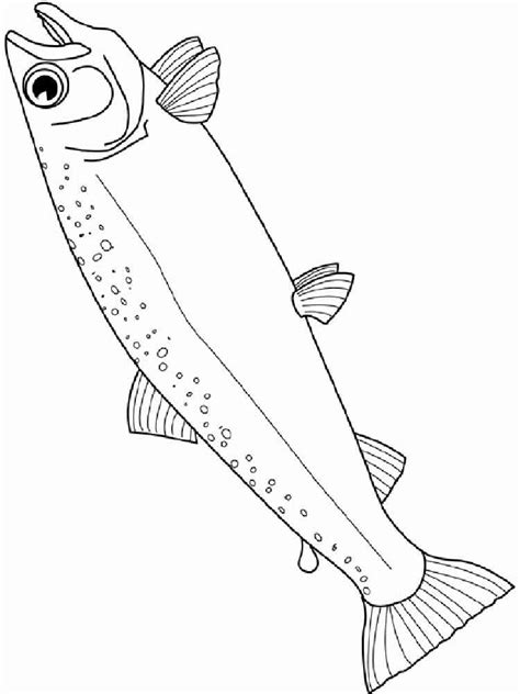 salmon coloring pages download and print salmon coloring