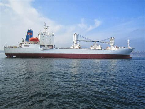 elysion ship management mtg dolphin