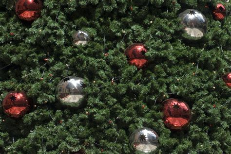 photo of christmas tree baubles free christmas images