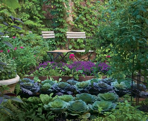 small kitchen garden ideas who says a kitchen garden can t be beautiful finegardening