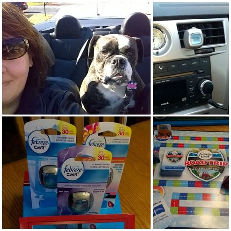 my dog stinks up my house love my dog but not the dog smell in my car and febrezecar giveaway