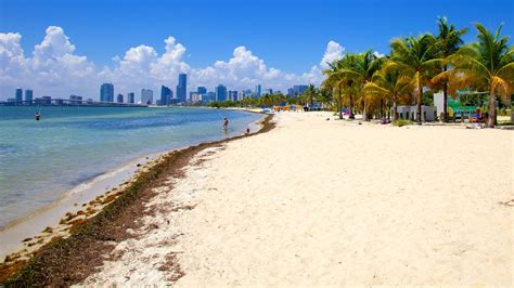 imagenes miami playa beach pictures view images of southeast florida