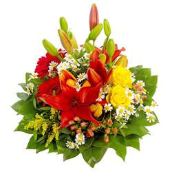 flowers png images the best flowers ideas