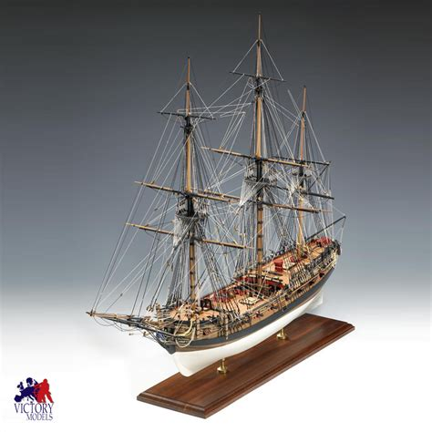 victory models hms fly circa   scale wooden model