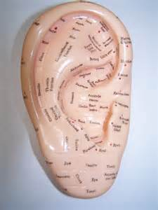 are your ears ringing tinnitus reflexology can help