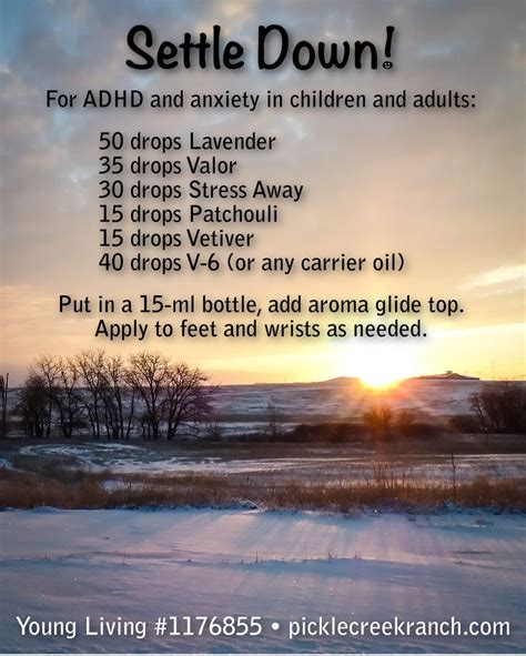 adhd and adults how to live with improve and manage your adhd or add as an books 25 best ideas about living focus on