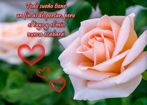 imagenes de flores bonitas para facebook im 225 genes de rosas hermosas para compartir en facebook