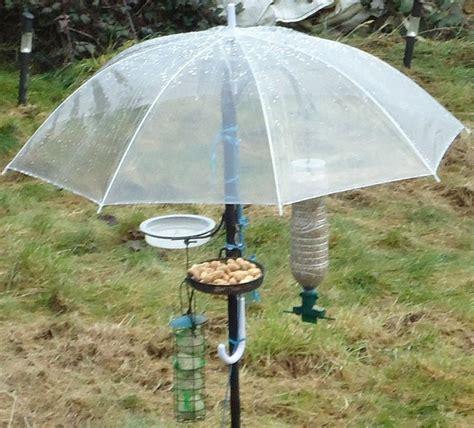 bird feeder with umbrella awesome bird houses feeders