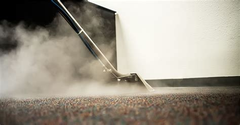 steam cleaners for upholstery cleaning woods waters carpet cleaning inc upholstery rug and