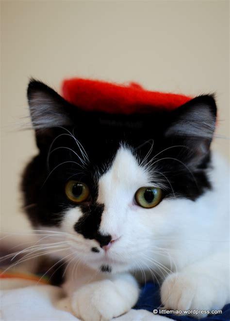 Cat Beret Hat beret cat cats in hats