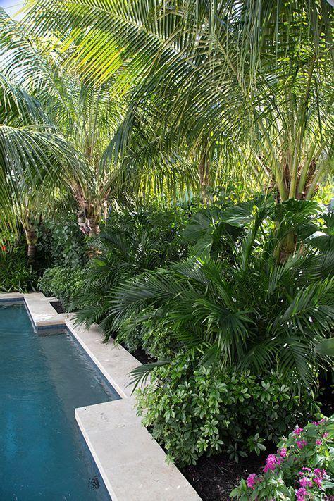 outdoor landscape design ideas tropical pool