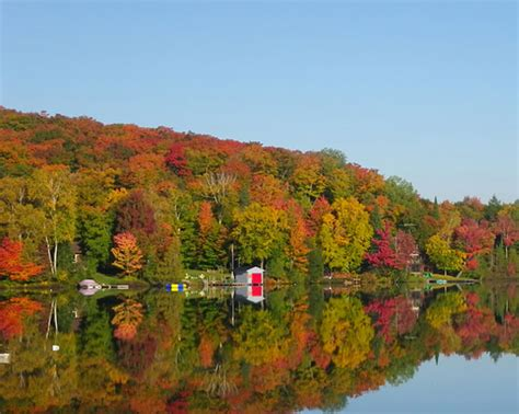 clearview cottages just a of huntsville on