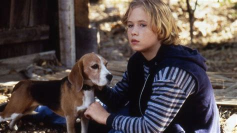 shiloh the here s what the boy from shiloh looks like today mtv