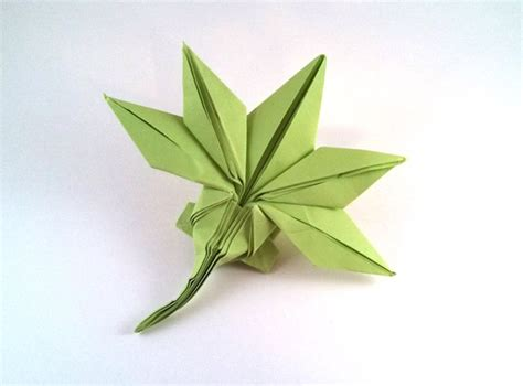 Origami Pot Leaf - origami maple leaf by jun maekawa folded by gilad aharoni