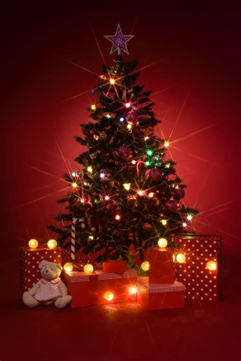 christmas tree image christmas tree with gifts on red background photo free