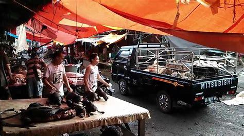 anjing panggang roast food of in tomohon m indonesia