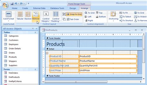 what is a layout view in access ms access 2007 ungroup controls on a form