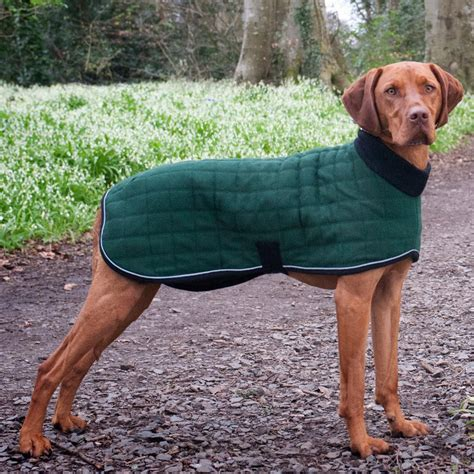 puppy coat therma winter coat with polo neck lansdown country makers of country