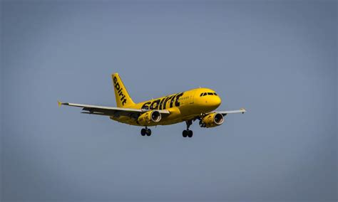 spirit airlines help desk spirit airlines sued by battered passengers flyertalk