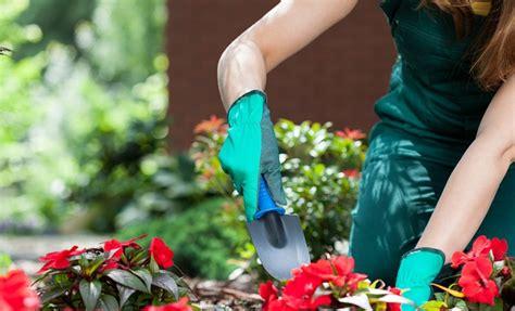 planning a flower garden olt