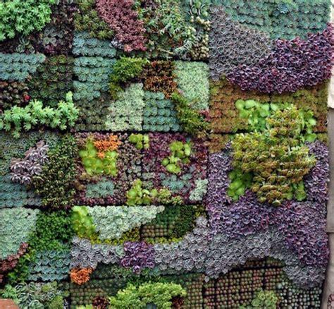 Vertical Cactus Garden Succulent Mosaic Vertical Garden By Sgplants Sgplants