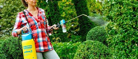 zanzare in giardino insetticida zanzare giardino idee per la casa